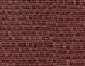 delight-chocolate-truffle-609