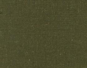 delight-grape-leaf-362-