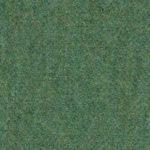 Seagrass-64