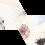 hex.lilledekorriga